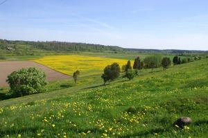Abavas ieleja, īpaši aizsargājama kultūrvēsturiska teritorija