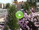 Balvu pilsētas dome video