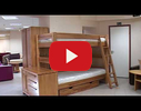 Eko Lignum, kokapstrāde video