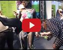 GA Studio, skaistumkopšanas salons video