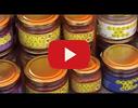 Green Hive, SIA video