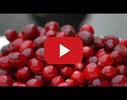 Pētnieciskā jaunsaimniecība Gundegas, Gundegas, ZS video