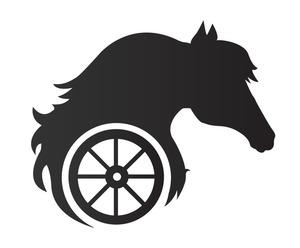 Jautrie zirgi, zirgu izjādes