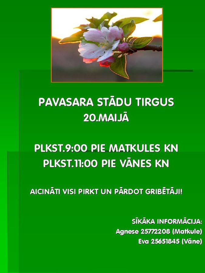 pavasara_stadu_tirgus.jpg
