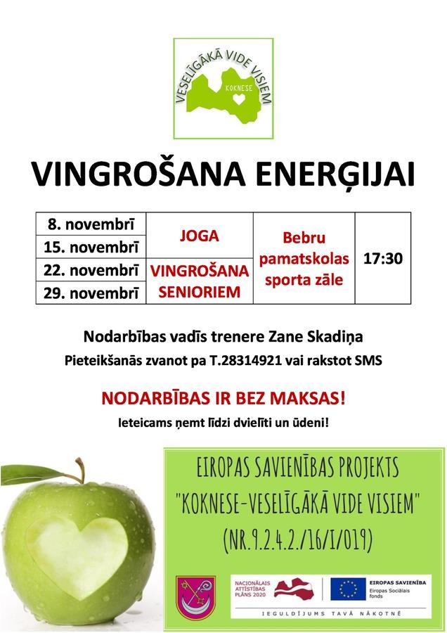 afisa_bebros_vingrosana_energijai_1.jpg