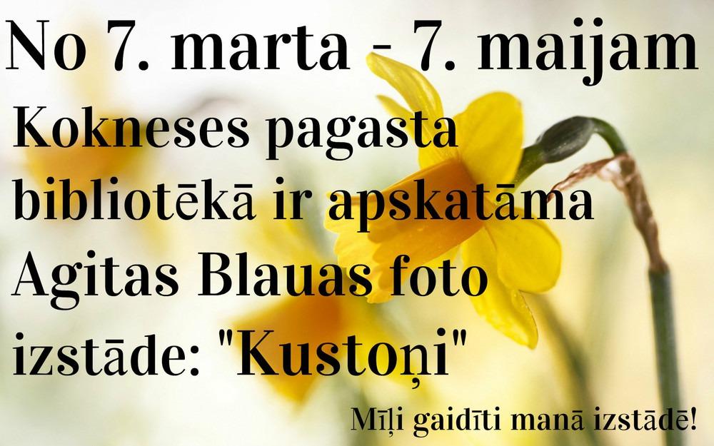 koknese_bb_kustoni_1.jpg