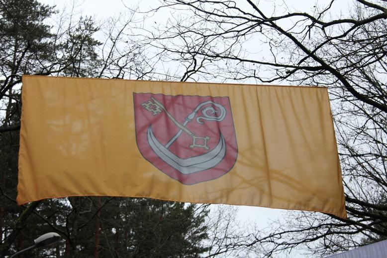 koknesesnov-mezaparka-karogu-aleja-18112013-1.jpg