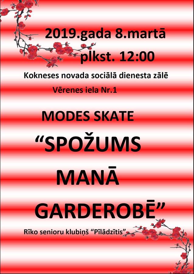 modes_skate.jpg