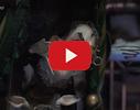 Leļļu galerija, miniatūra karaļvalsts, apskates objekts video