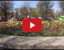 Liepājas Universitāte video
