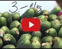 Līgo Bazārs, tirgus video