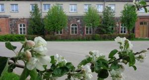Mežvidu pamatskola