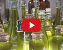 Linarium Cannabium video