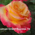 pulman-orient-express.jpg