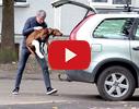 Toto, veterinārā ambulance video