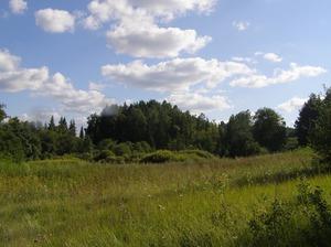 Venteru pilskalns, городище