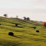 2017.gada rudenī Abavas ieleja. Fotogrāfs Jānis Kamerāds