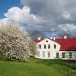 2015.gads. Kandavas novada muzejs. Foto: Daiga Rēdmane